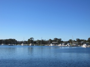 The marina as seen from Paynesville.
